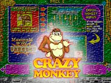 Crazy Monkey играть на деньги в казино Эльдорадо